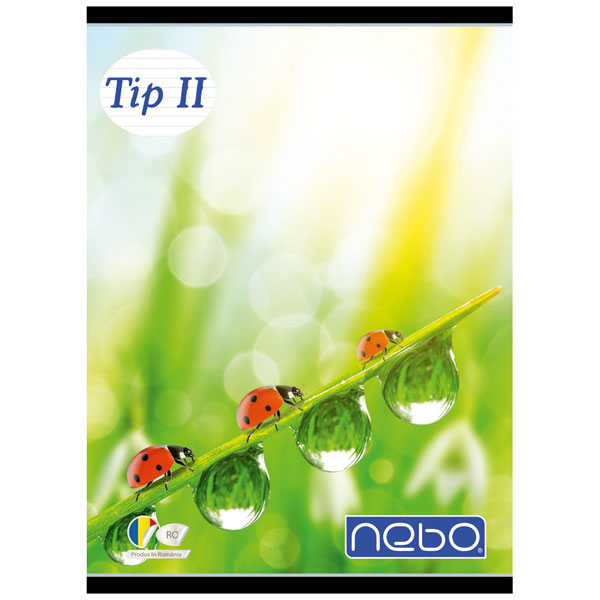 Caiet A5 tip II 24 file - NEBO